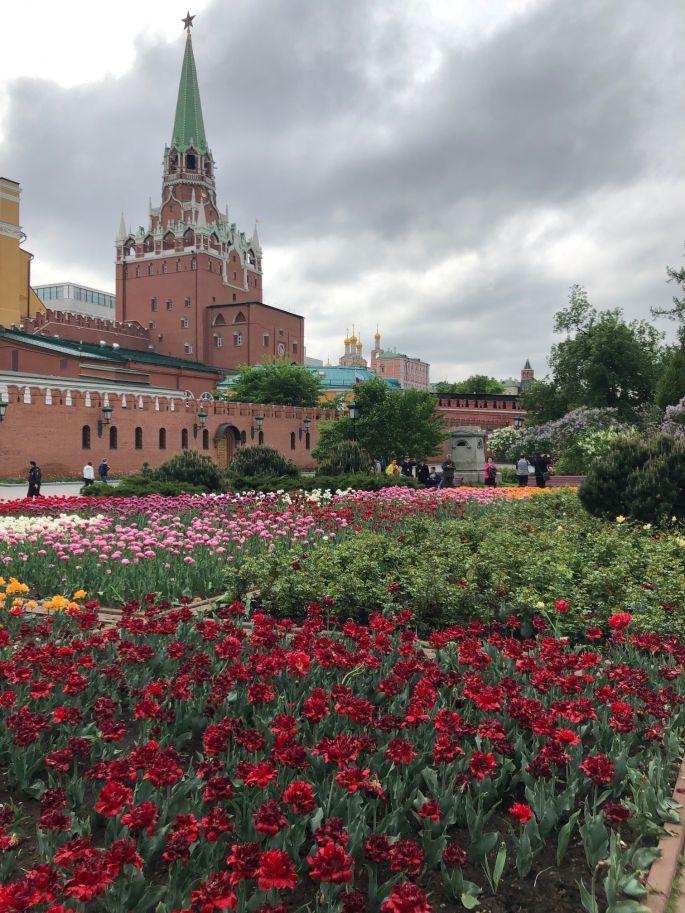 Kremlin 2 IMG_0850